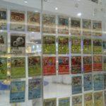 ポケモンカードみんなでコレクションキャンペーンをやってきた